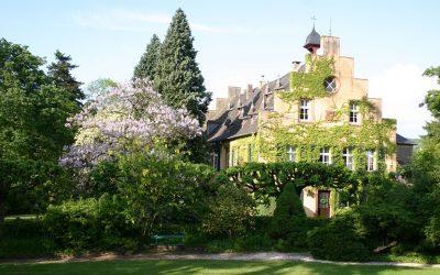Freie Trauung Weingut Maximin Grünhaus